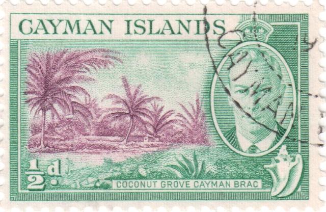 cayman2